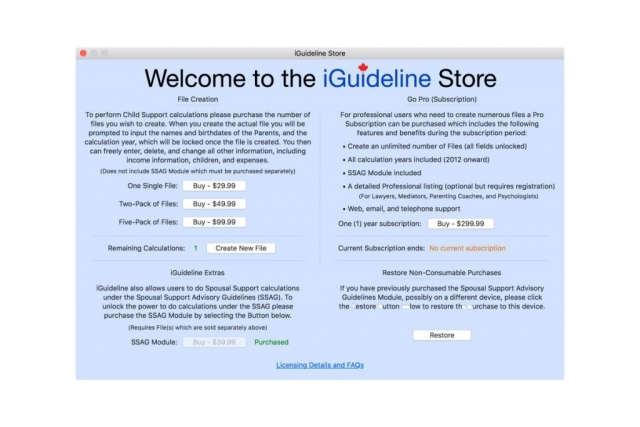 Image of iGuideline Store Window